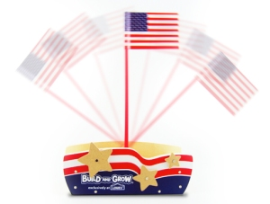 Waving Flag Craft